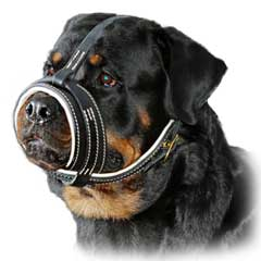 Fuly leathern well fitting dog muzzle