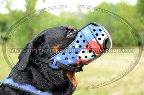 Designer Dog Muzzle For Powerful Rottweilers