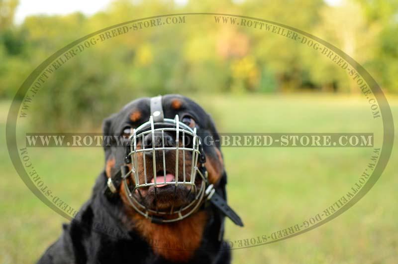 comfortable wire dog muzzle