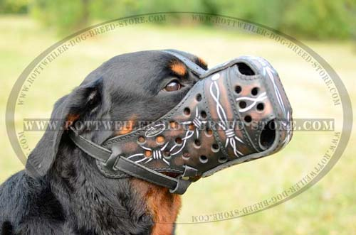 Easy-To-Use Rottweiler Muzzle