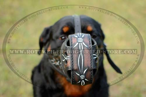 Super Ventilated Rottweiler Muzzle