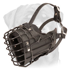 Comfortable Rottweiler muzzle for obedience training