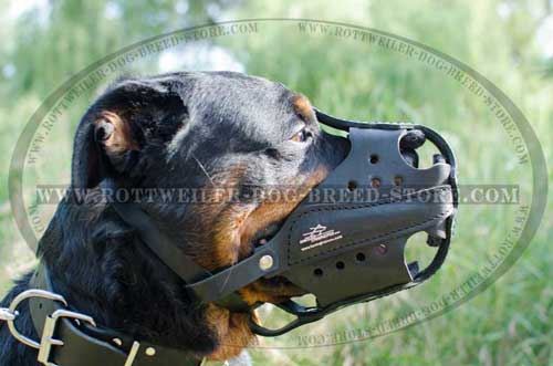 Extra Strong Leather Canine Muzzle Protects During Attack Work