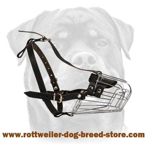 rottweiler breed training fine wire cage canine muzzle excellent wire cage dog muzzle