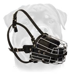 Wire cage dog muzzle padded from inside