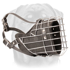 Wire Cage Muzzle for your Rotty