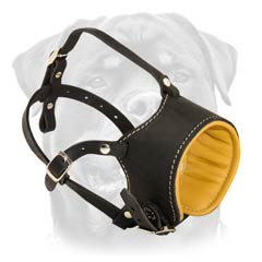 Comfortable exclusive Nappa padded dog muzzle