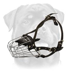 Exclusive lightweight wire dog muzzle