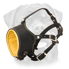 Quality leather muzzle with Nappa padding