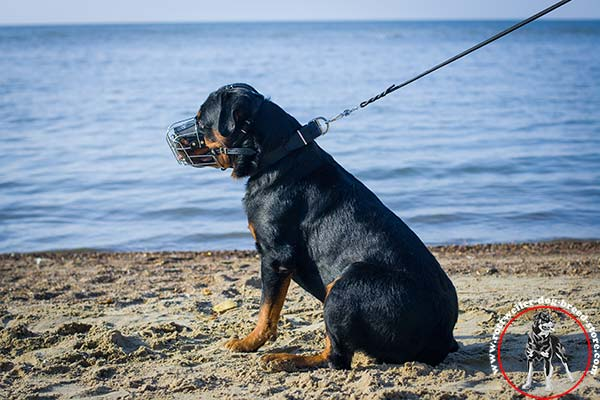 Eas to adjust Rottweiler muzzle