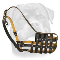 Lightweight comfortable leather muzzle