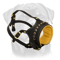 Durable handicraft dog muzzle