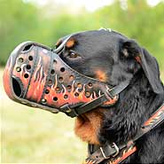 Walking Rottweiler Muzzle With Fire Flames Painting