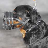 Everyday light weight super ventilation Rottweiler muzzle