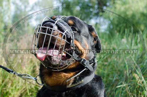 Metal Cage Wire Rottweiler Muzzle with Proper Ventilation