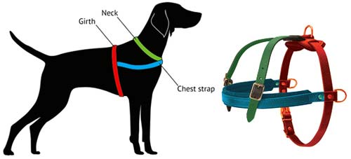 Tracking Leather Rottweiler Harness Horizontal Padded