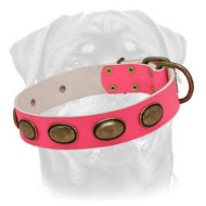 Handcrafted Pink Leather Rottweiler Collar with Brass Oval Plates for Lady-Dog