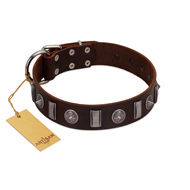 """Spiky Way"" FDT Artisan Brown Leather Rottweiler Collar with Silver-Like Decorations"