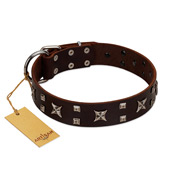 """Bigwig Woof"" FDT Artisan Brown Leather Rottweiler Collar with Chrome Plated Stars and Square Studs"