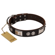 """Baller Status"" FDT Artisan Brown Leather Rottweiler Collar Adorned with a Set of Chrome Plated Studs and Plates"