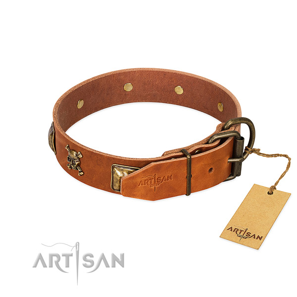 Top notch leather dog collar with reliable adornments