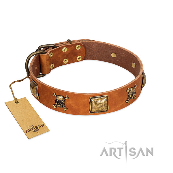 Designer full grain natural leather dog collar with reliable studs