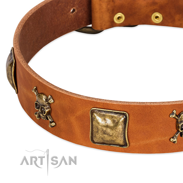 Unique genuine leather dog collar with strong decorations
