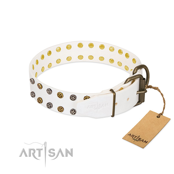Genuine leather collar with stylish design embellishments for your four-legged friend
