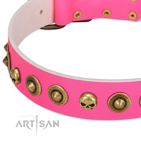 Amazing embellishments on leather collar for your pet