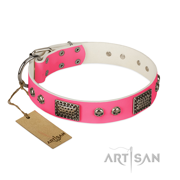 Easy adjustable full grain leather dog collar for walking your pet