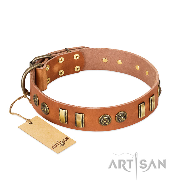Strong studs on full grain genuine leather dog collar for your canine
