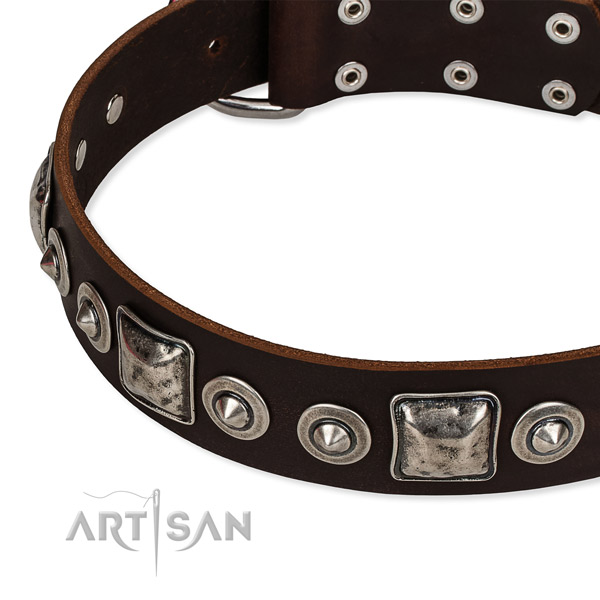 Full grain natural leather dog collar made of reliable material with embellishments