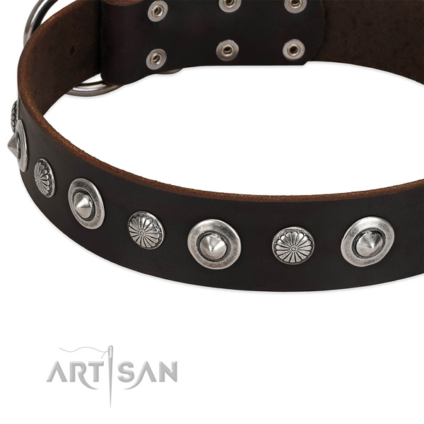 Stylish embellished dog collar of quality full grain genuine leather