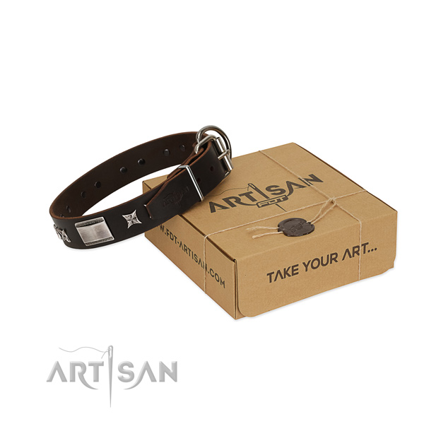 Handcrafted collar of full grain leather for your stylish pet