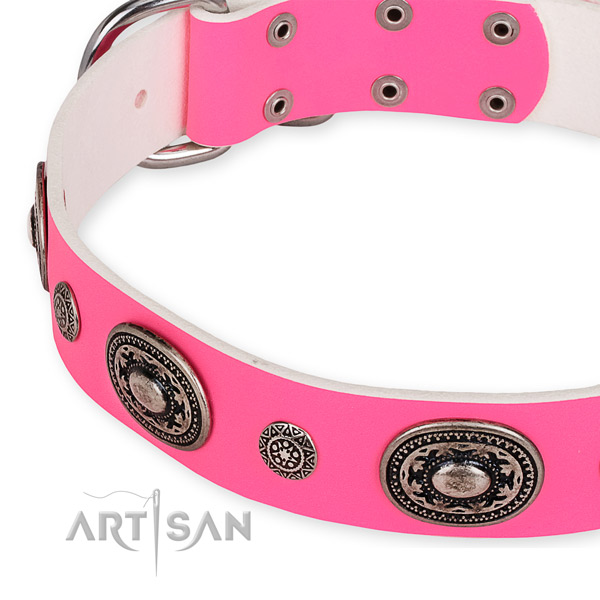 Leather dog collar with exquisite rust resistant embellishments