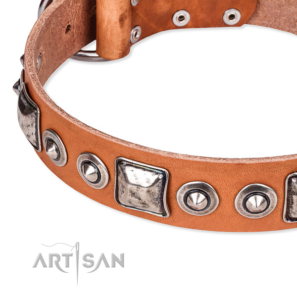 Soft full grain leather dog collar created for your impressive canine