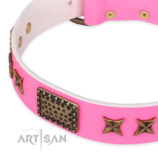 Full grain genuine leather collar with corrosion proof hardware for your lovely pet