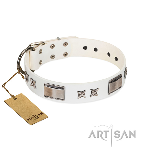 Trendy dog collar of genuine leather