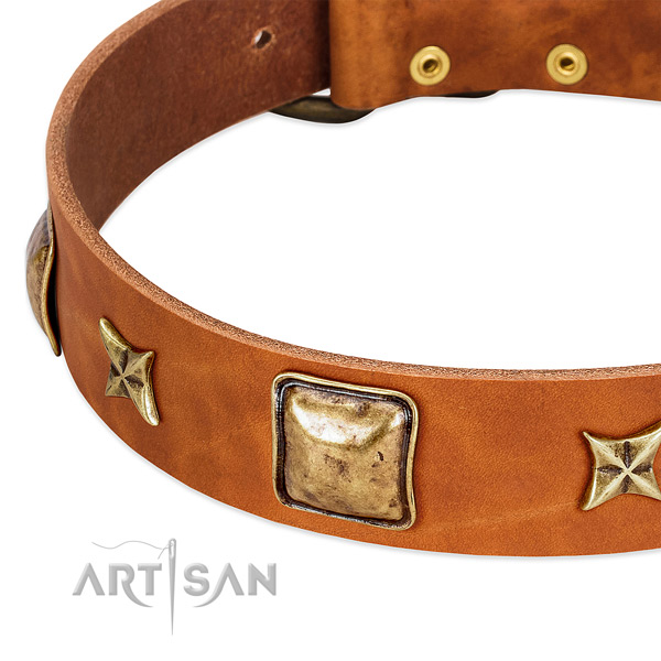 Corrosion proof hardware on full grain genuine leather dog collar for your dog