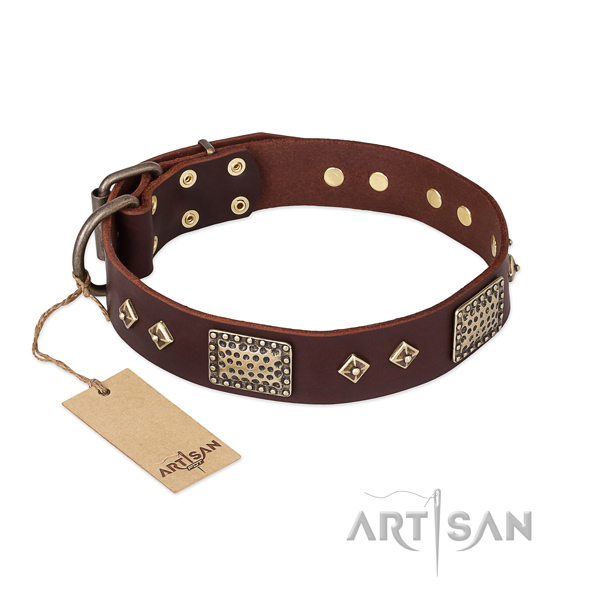 Adjustable full grain genuine leather dog collar for stylish walking