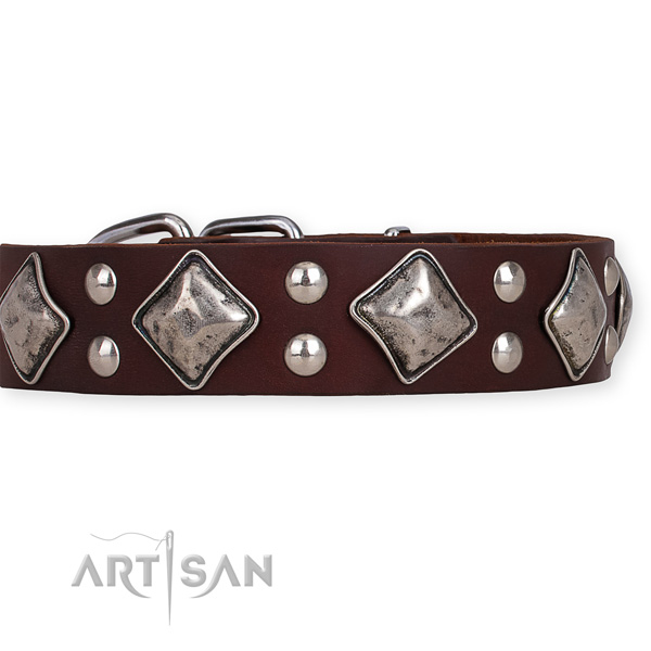 Leather dog collar with designer reliable embellishments