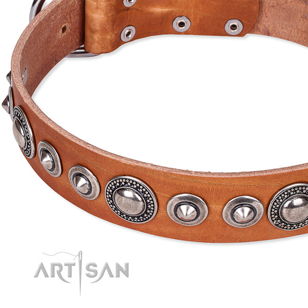Comfortable wearing adorned dog collar of best quality full grain natural leather