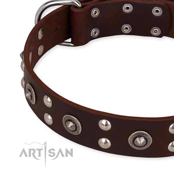 Full grain leather collar with corrosion proof buckle for your lovely pet