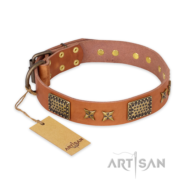 Top notch full grain natural leather dog collar with strong fittings