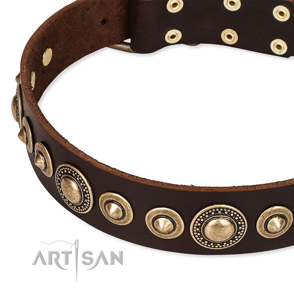 Best quality genuine leather dog collar created for your handsome pet
