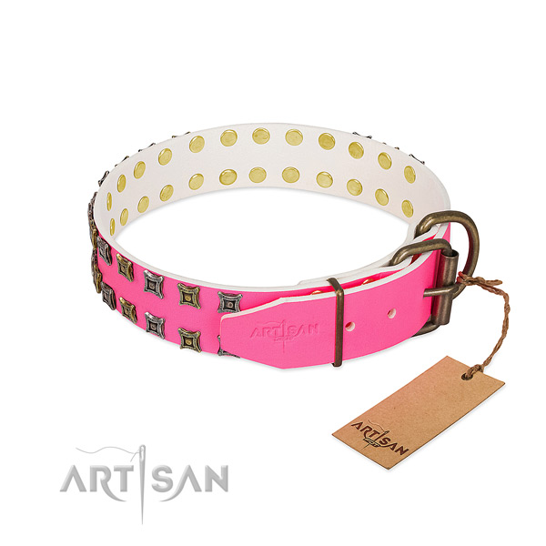 Full grain leather collar with unique studs for your four-legged friend