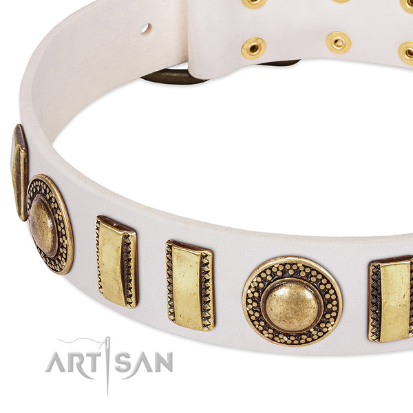 Strong leather dog collar with durable fittings