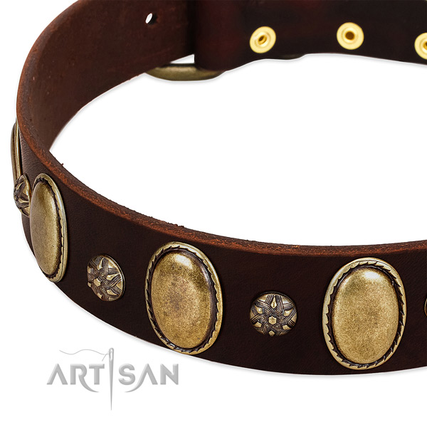 Comfy wearing best quality leather dog collar