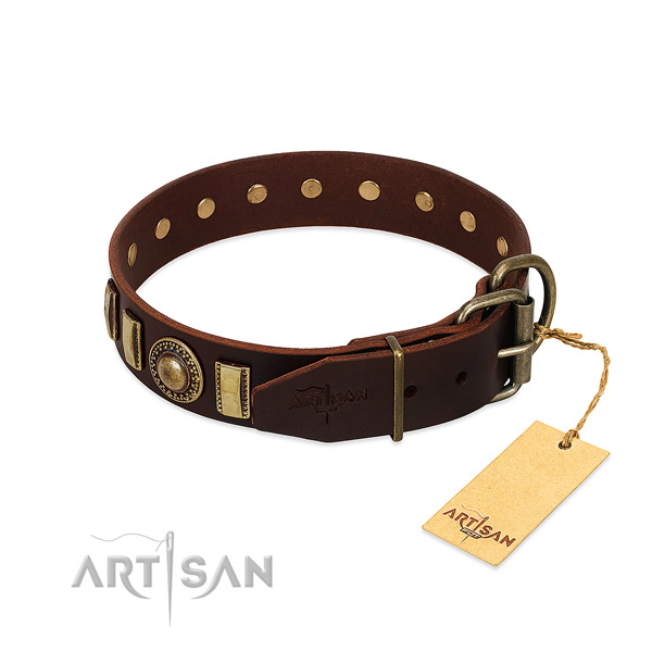 Unique full grain leather dog collar with corrosion resistant fittings