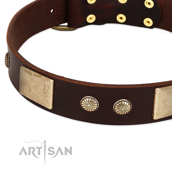 Reliable traditional buckle on full grain genuine leather dog collar for your four-legged friend